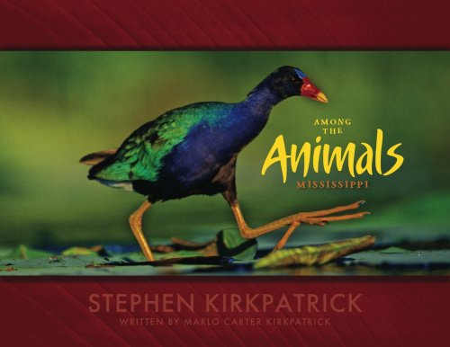 9780981913209: Among the Animals: Mississippi