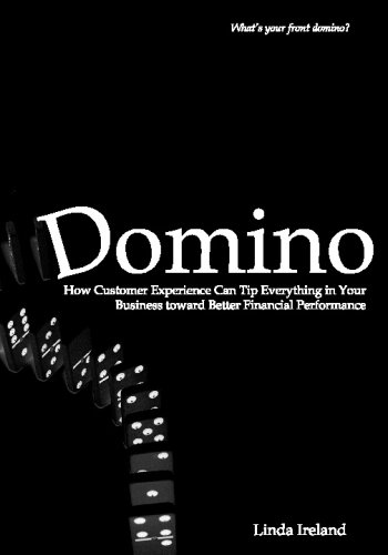 9780981930206: Domino: How Customer Experience Can Tip Everything in Your Business Toward Better Financial Performance