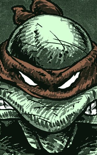 9780981949703: Teenage Mutant Ninja Turtles : Collected Book Volume One