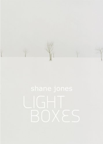 9780982081310: Light Boxes