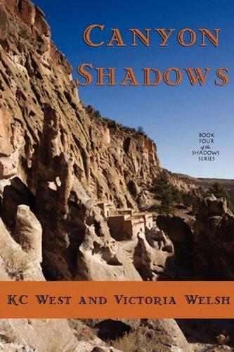 9780982285893: Canyon Shadows