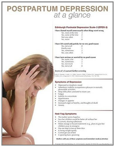 9780982337936: Postpartum Depression at a Glance Poster
