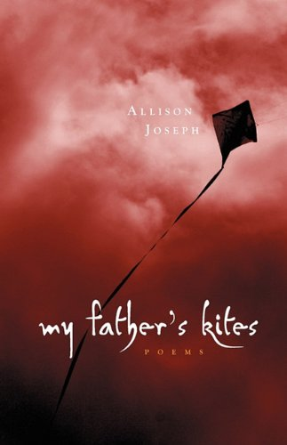 9780982416921: My Father's Kites