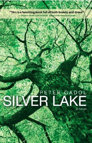 9780982520901: Silver Lake