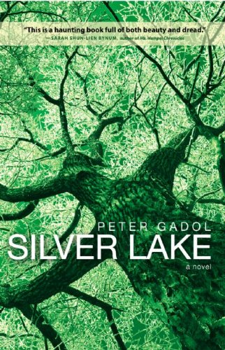 9780982520918: Silver Lake
