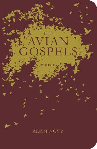 The Avian Gospels, Book II: Novy, Adam