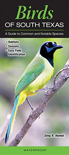 9780982551653: Birds of South Texas incl. the Lower Rio Grande Valley: A Guide to Common & Notable Species (Quick Reference Guides)