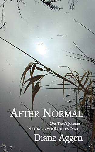 9780982580059: After Normal: One Teen's Journey Following Her Younger Brother's Death