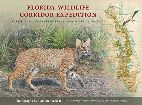 9780982639627: Florida Wildlife Corridor Expedition