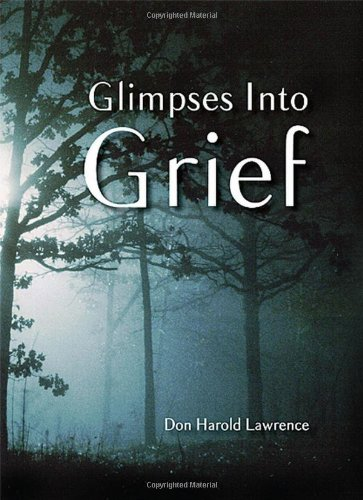 9780982784808: Glimpses Into Grief