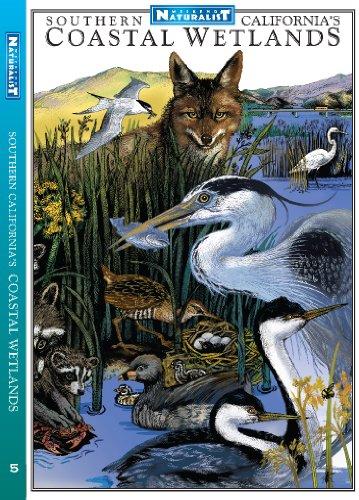 9780982835647: Southern California's Wetlands (Weekend Naturalist © Field Guide, #5)