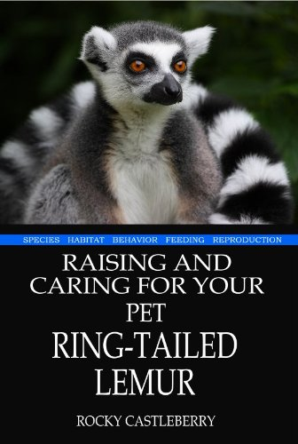 Raising And Caring For Your Pet Ring-tailed Lemur: Rocky Castleberry