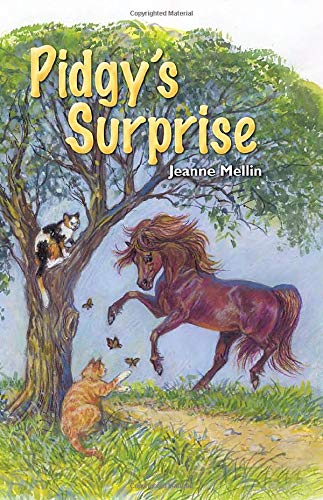 Pidgy's Surprise: The Little Pony with a: Jeanne Mellin