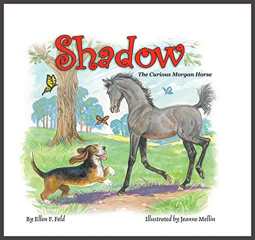 9780983113836: Shadow: The Curious Morgan Horse