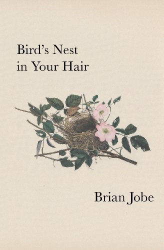 9780983151319: Birds Nest In Your Hair