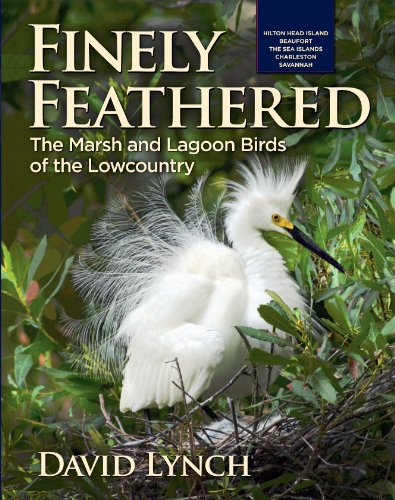 9780983151913: Finely Feathered