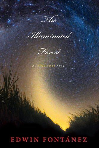 9780983189169: The Illuminated Forest