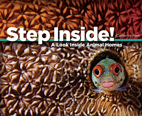 Step Inside!: A Look Inside Animal Homes: Ham, Catherine