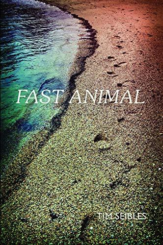 9780983294429: Fast Animal