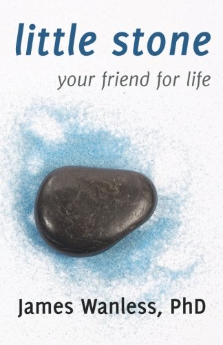 9780983302445: Little Stone: Your Friend for Life