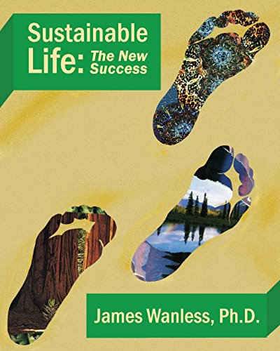9780983302483: Sustainable Life: The New Success
