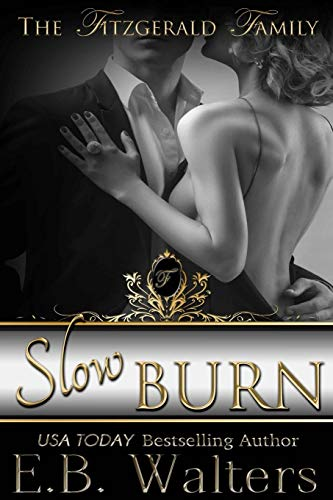 9780983429708: Slow Burn (The Fitzgerald Family)
