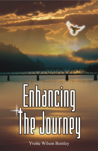 9780983448181: Enhancing the Journey