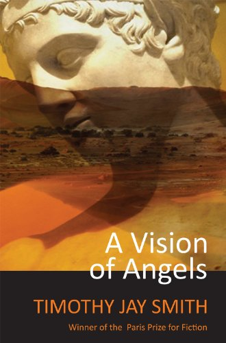9780983476443: A Vision of Angels