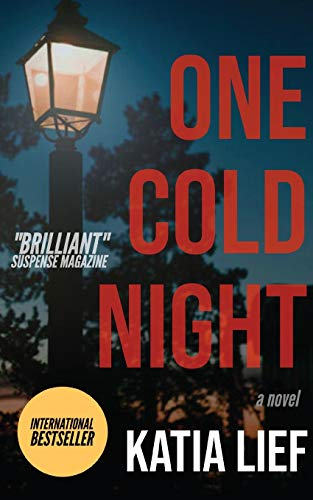9780983499091: One Cold Night
