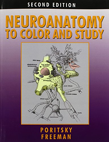 9780983578413: Neuroanatomy to Color and Study