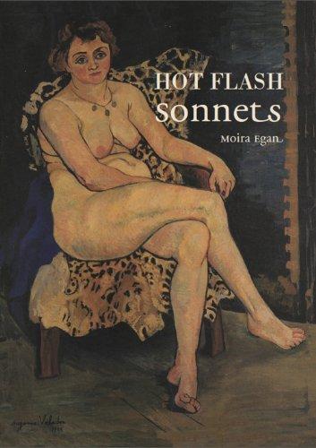 9780983620945: Hot Flash Sonnets