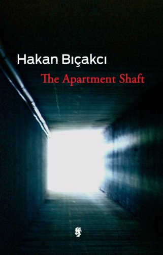9780983625223: The Apartment Shaft