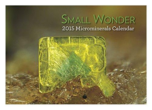 Small Wonder 2015 Microminerals Calendar: Dona Leicht