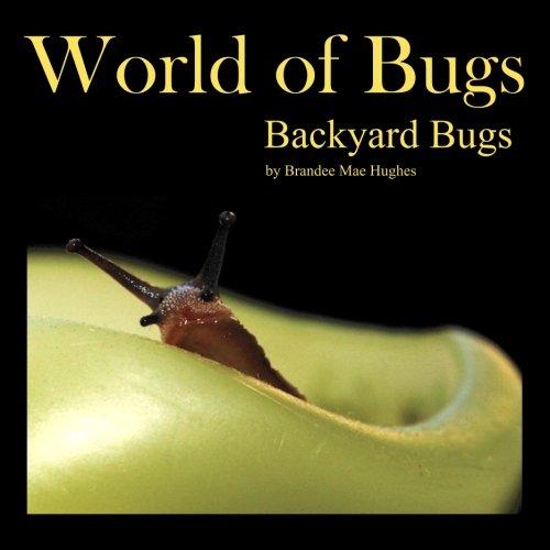 9780983829553: World of Bugs: Backyard Bugs: Volume 1