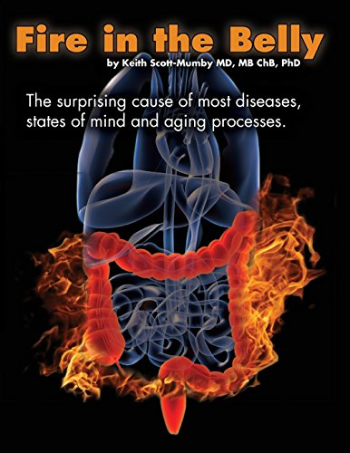 9780983878476: Fire In The Belly: The Surprising Cause of Most Diseases, States Of Mind and Aging Processes