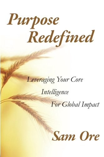 9780983961376: Purpose Redefined: Leveraging Your Core Intelligence for Global Impact