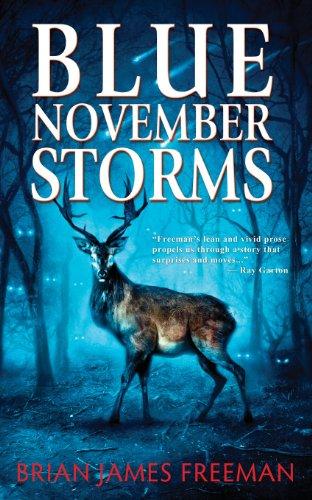 9780984074518: Blue November Storms