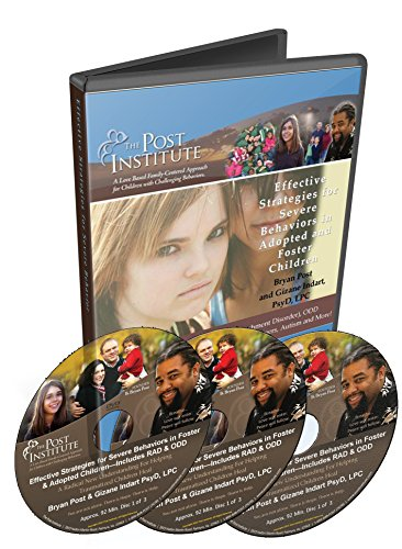 9780984080182: Effective Strategies for Severe Behaviors in Foster and Adopted Children