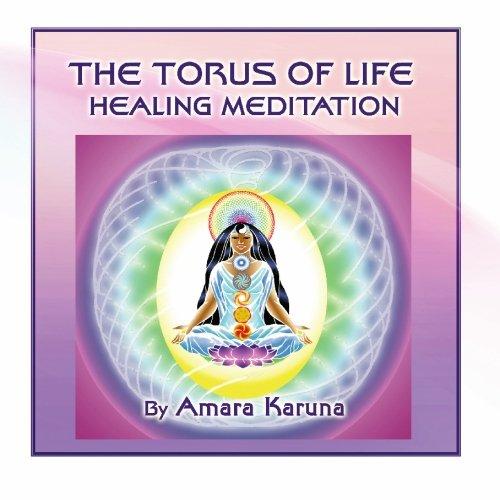9780984227419: The Torus of Life Healing Meditation