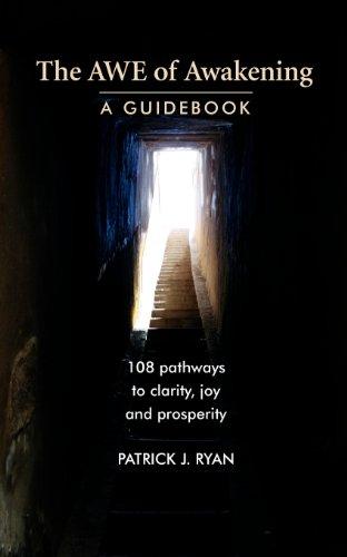 9780984236312: The AWE of Awakening: A Guidebook