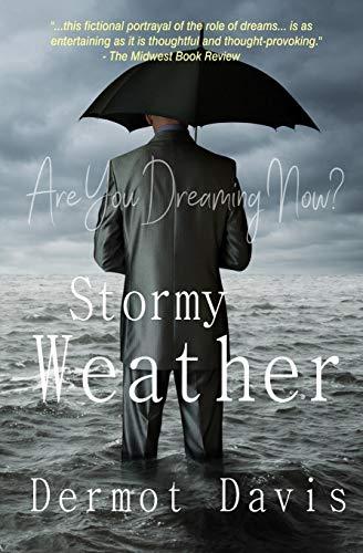 9780984418114: Stormy Weather