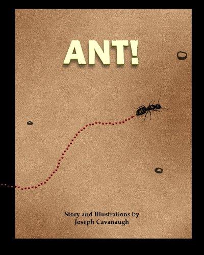 9780984423712: Ant!