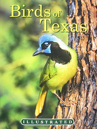 9780984518920: The Illustrated Birds of Texas
