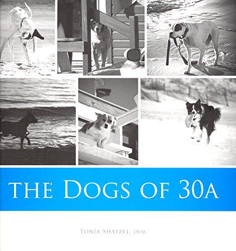 Lucky Dog: Shatzel , Tonia DVM