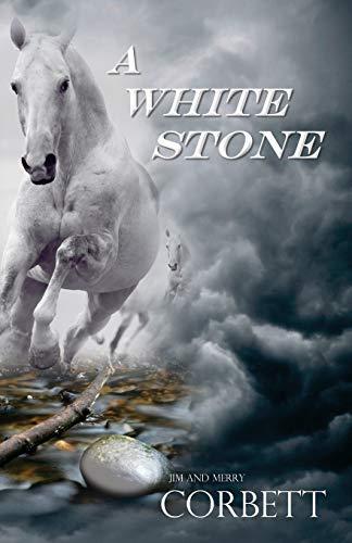 9780984862474: A White Stone