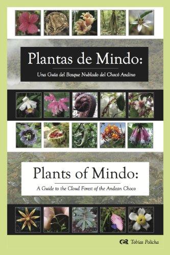 9780984900305: Plantas de Mindo: Una Guía de Bosque Nublado del Chocó Andino : Plants of Mindo: A Guide to the Cloud Forest of the Andean Choco