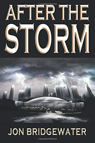 9780984914210: After the Storm: A David Storm Mystery (Volume 2)