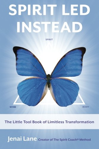 9780984936601: Spirit Led Instead: The Little Tool Book of Limitless Transformation
