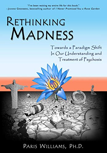 9780984986705: Rethinking Madness: Towards a Paradigm Shift in Our Understanding and Treatment of Psychosis
