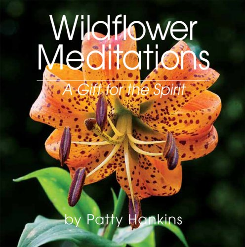 9780984994106: Wildflower Meditations: A Gift for the Spirit